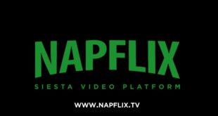 napflix-logo2