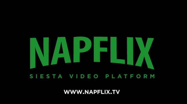 Napflix logo
